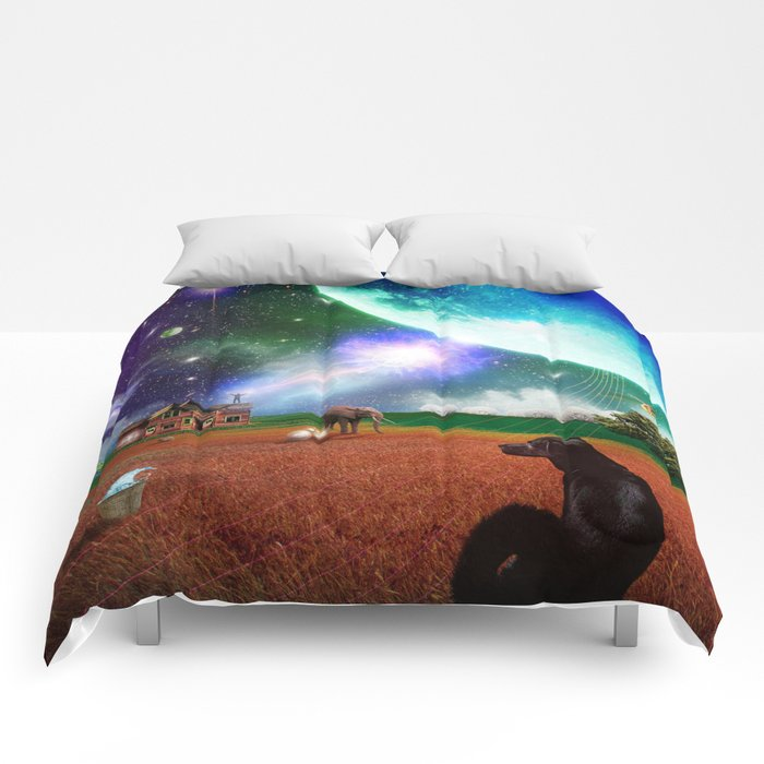 A Most Unusual Evening Comforters