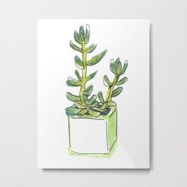 WC&S - Jade Metal Print