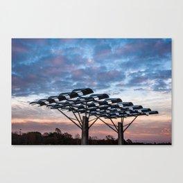 Manmade vs Nature Canvas Print