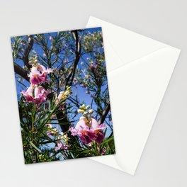 Desert Bells Stationery Cards