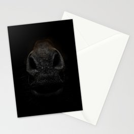 Horse Details In The Dark - Muzzle Stationery Cards