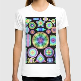 Ernst Hackel Diatomea Diatoms T-shirt
