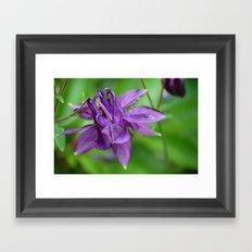 Lovely purple Framed Art Print