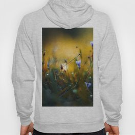 The Valley of Giants Hoody