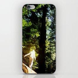 Redwoods I iPhone Skin