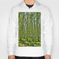 birch Hoodies featuring Birch Grove by Svetlana Korneliuk