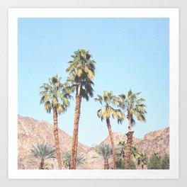 Palm Tree Desert Art Print