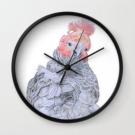 Mischievous Galah Wall Clock
