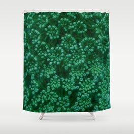 Green Queen Anne's Lace (Up Close) Shower Curtain