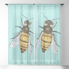 Bee pencil drawing color version Sheer Curtain