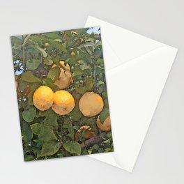 Lemon tree full of lemons Stationery Cards