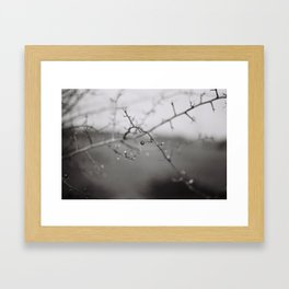35mm Framed Art Print