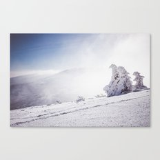Frosty day Canvas Print