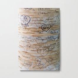 Love Memories in Lover's Lane, Green Gables Metal Print