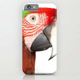 A Beautiful Bird Harlequin Macaw Portrait Background Removed iPhone Case