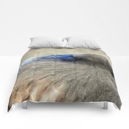 Downy Cutie Comforters