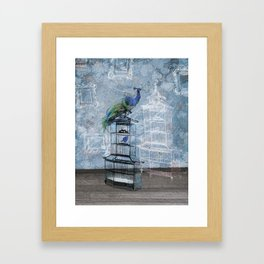 Quirky Peacock and Birdcage  Framed Art Print