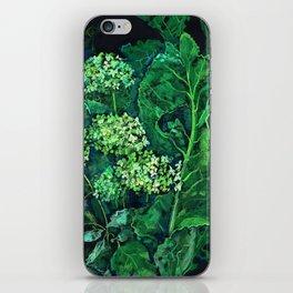Hydrangea and Horseradish, black and green iPhone Skin