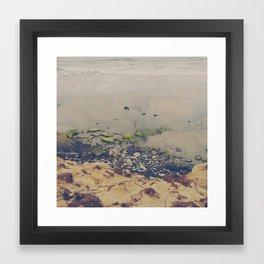 Beach Runner Framed Art Print