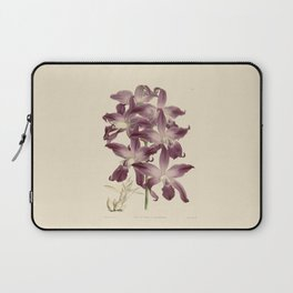 R. Warner & B.S. Williams - The Orchid Album - vol 01 - plate 049 Laptop Sleeve