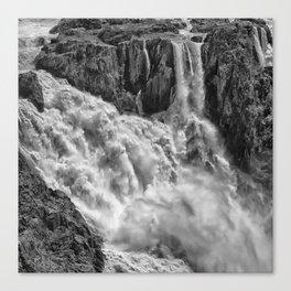 Black and White Beautiful Waterfall Canvas Print