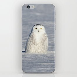 The Snow Queen iPhone Skin