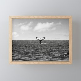 Whale Tail Framed Mini Art Print