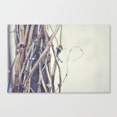 bundled Canvas Print