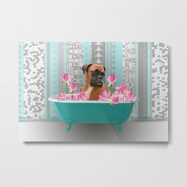 Boxer Dog in Bathtub with Lotos Flowers #boxer #dog Metal Print