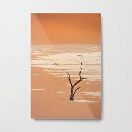 NAMIBIA ... Deadvlei Metal Print