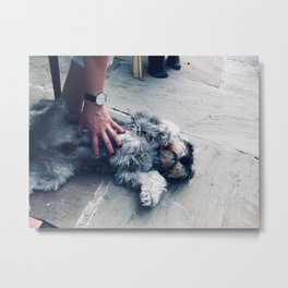 The Belly Rub Metal Print