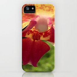 Yellow Orchid Flower Blossom from Mexico iPhone Case