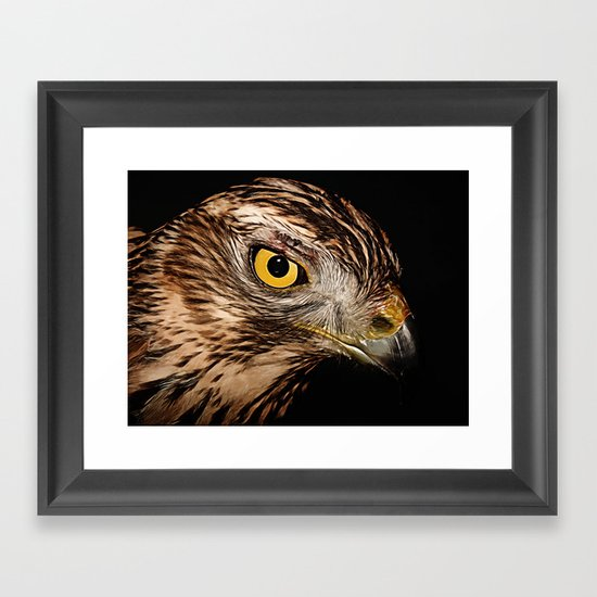 Nobility  Framed Art Print