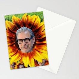 Jeff Goldbloom Stationery Cards