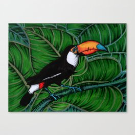 Toco Toucan Canvas Print