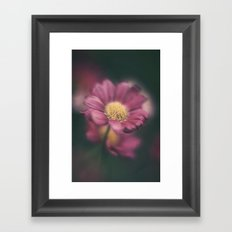 Daisy' Framed Art Print