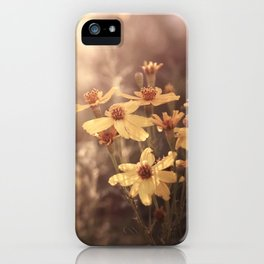 there's a world outside iPhone Case