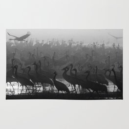 Cranes in the fog Rug