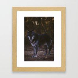 Nadi Framed Art Print