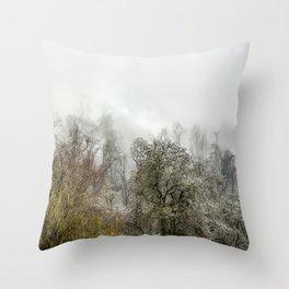 Winter Spell Throw Pillow