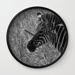 Zebra in Black & White Wall Clock
