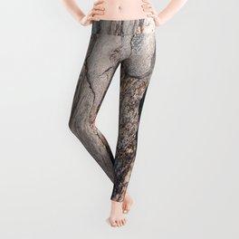 Metamorphic #2 Leggings