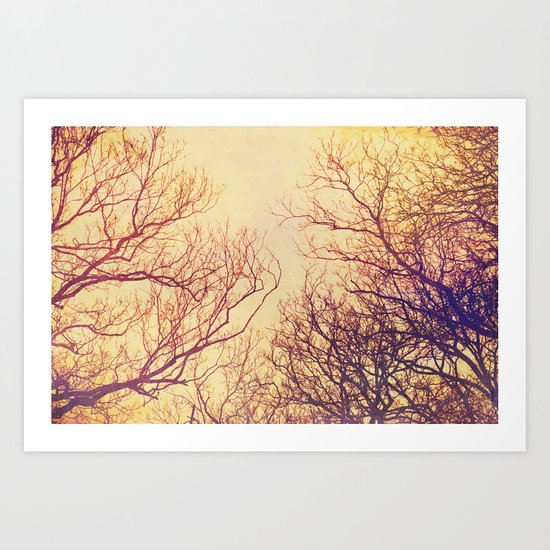 High up in the trees Art Print