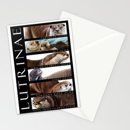 Otters of the World Stationery Cards