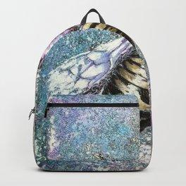 reintegration Backpack