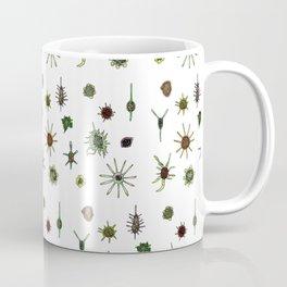 dorstenia mania color Coffee Mug