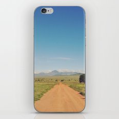 Vintage Africa 04 iPhone & iPod Skin