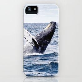 Humpback Whale Ocean iPhone Case