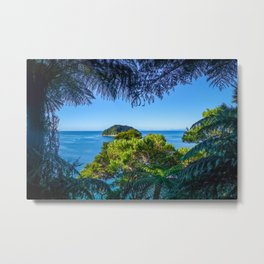 Track view in Abel Tasman National Park, New Zealand Metal Print