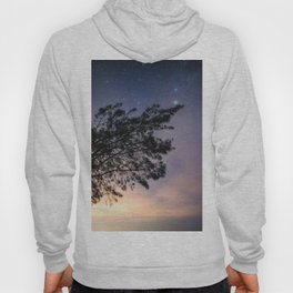 Amazing starry scene. Silhouette of a tree with colorful starry sky. Hoody